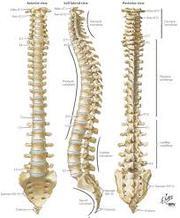 Spinal Decompression Frisco